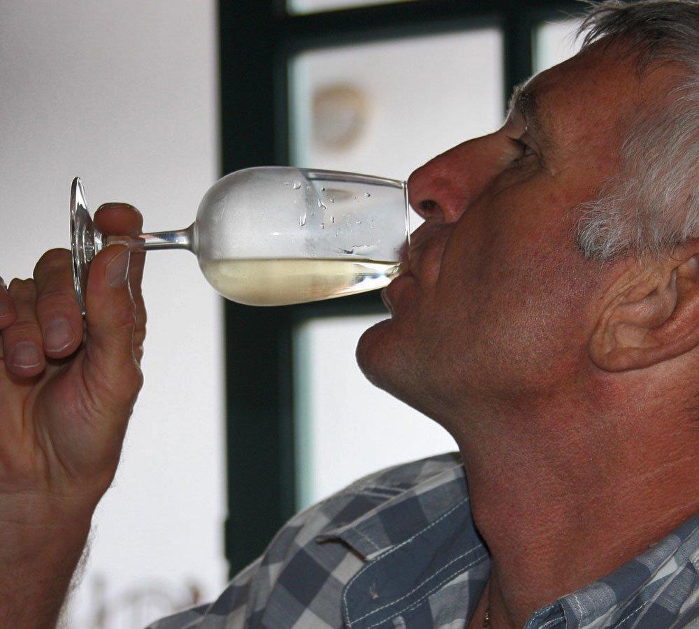 bodega visit wine tasting tour