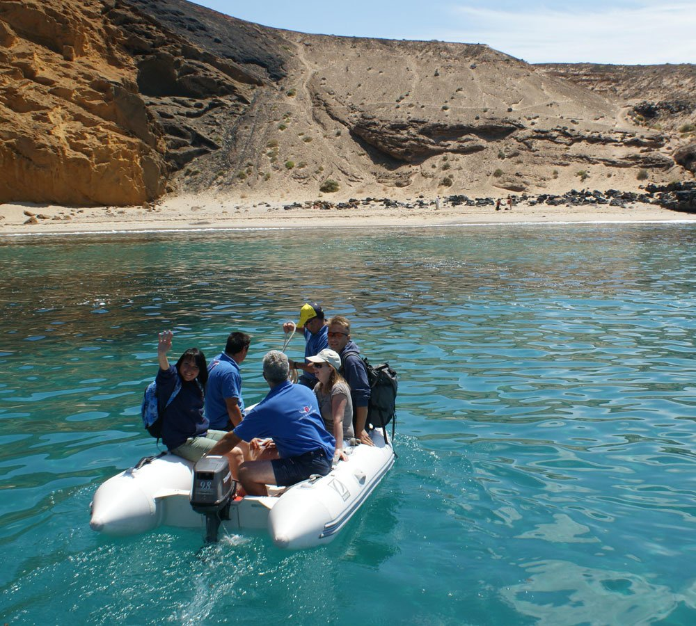 learn about bird watching in lanzarote