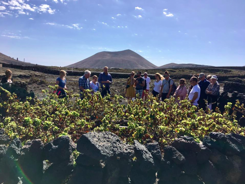 Origin wines of Lanzarote